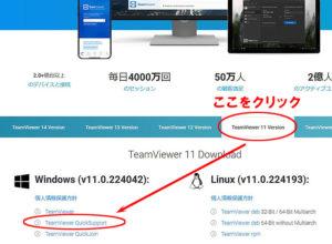 TeamViewer QuickSupoort